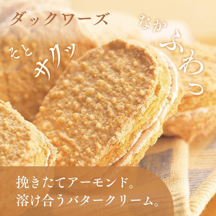 福岡の焼菓子 通販 ダックワーズ